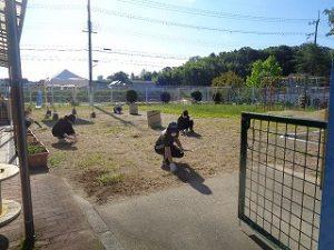 幼稚園園庭の草引きの様子