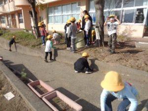 1年生は葉っぱを集めました。